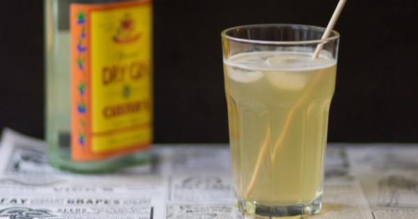 Hausgemachtes Tonic Water - Kraut und Rüben