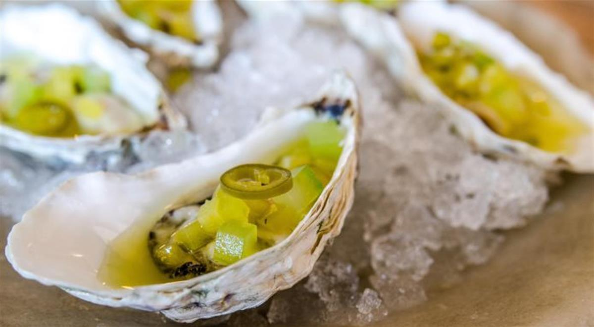 Pickled Porthilly Oysters with Cucumber, Gherkins and Green Chilli